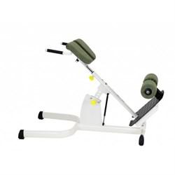 Гиперэкстензия Gym80  Sygnum Medical 3237 - фото 20935